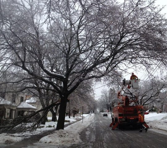 A picture of the Waterloo ice storm. Snow cleaner driving by a frosted tree on the street.