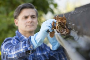 Close Up Photo of Man Cleaning Leaves from Eavestrough