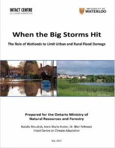 Wetlands flooding prevention Report Cover