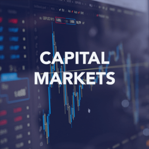 Capital Markets Articles Icon