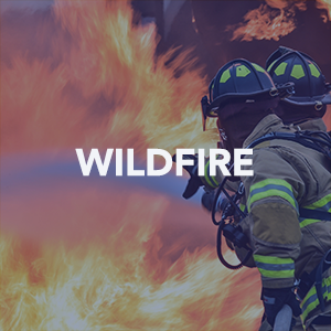 Wild Fire articles icon