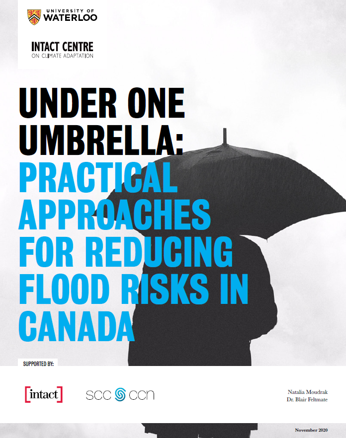 Under One Umbrella Report Cover EN